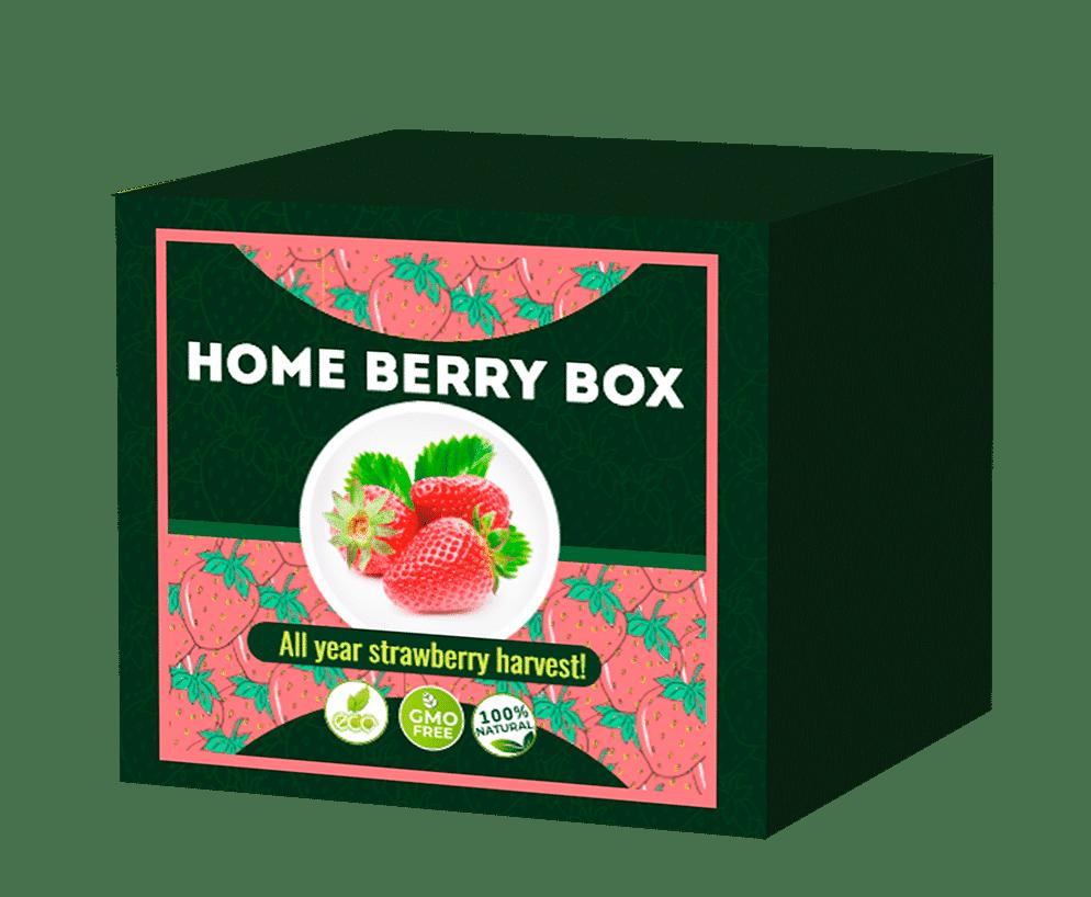 Recensioni Home Berry Box